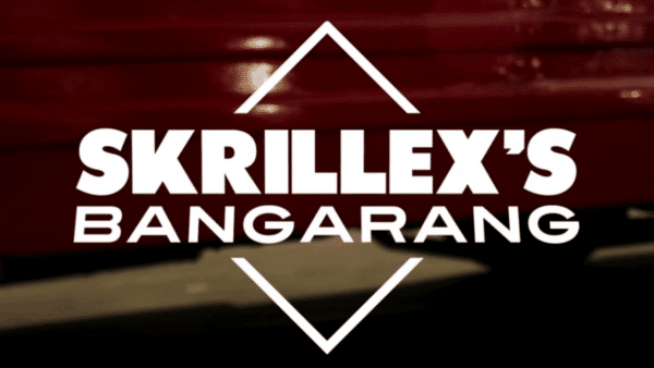 Bangarang'Skrillex chopped by Sims